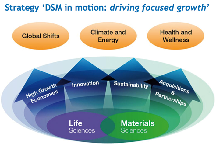 Figure 1. DSM strategy is driven by important global challenges