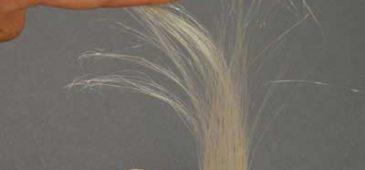 3D_printed_hair