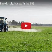 What is happening with glyphosate in the EU?