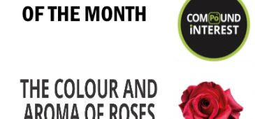 infographic aroma of roses