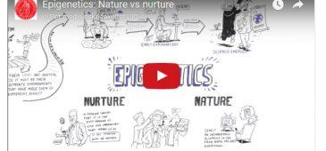 epigenetics video