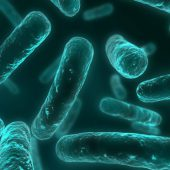 University of Dundee Wins UK Grant to Boost Discovery of New Antibacterial Drugs