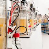 Wageningen University & Research achieves breakthrough in organic acid production