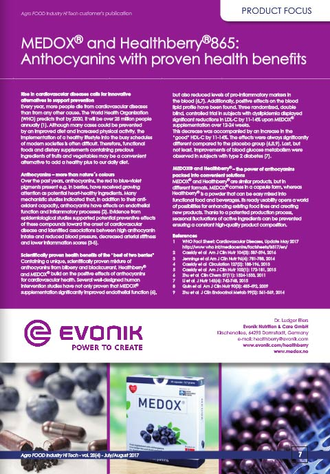 e-version image