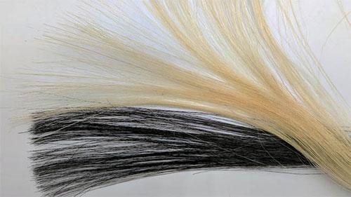 graphene-hair